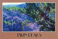 13_twinpeaks.jpg